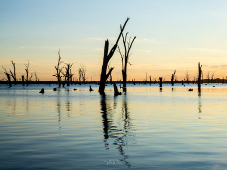 Lake Mulwala Yarrawonga