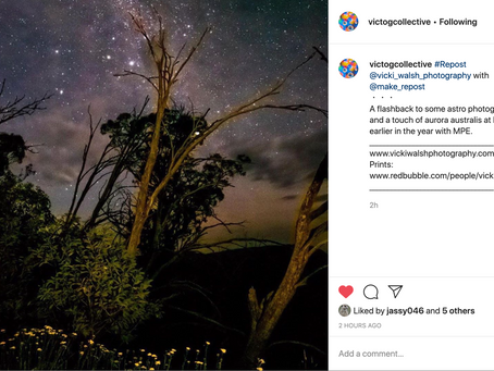 Instagram feature by Victorian Photography Collective & GW Australia