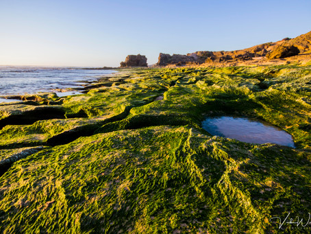Gunnamatta Ocean Beach