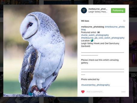 Instagram Feature by melbourne_photoblog & loves_united_australia