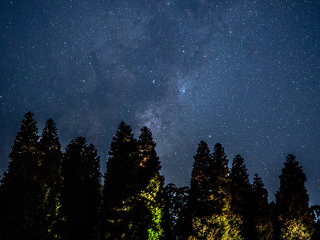 Astro photography at RJ Hammer Arboretum