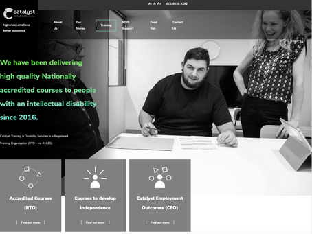 Catalyst Training & Disability Services Website