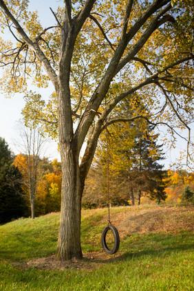 Hemlock_Hills_Farm_web-11-tree-swing.jpg