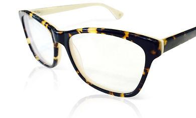 Tortoise Wayferer Specs