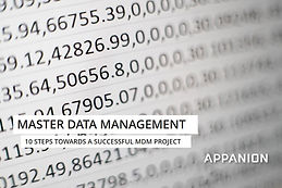 10 steps towards a successful Master Data Management project