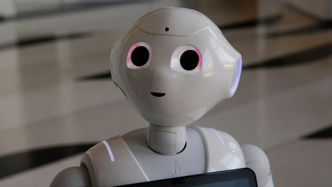 pepper robot.jpg