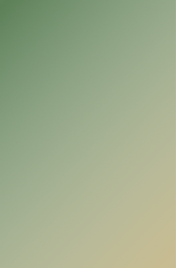Home - background (4).png