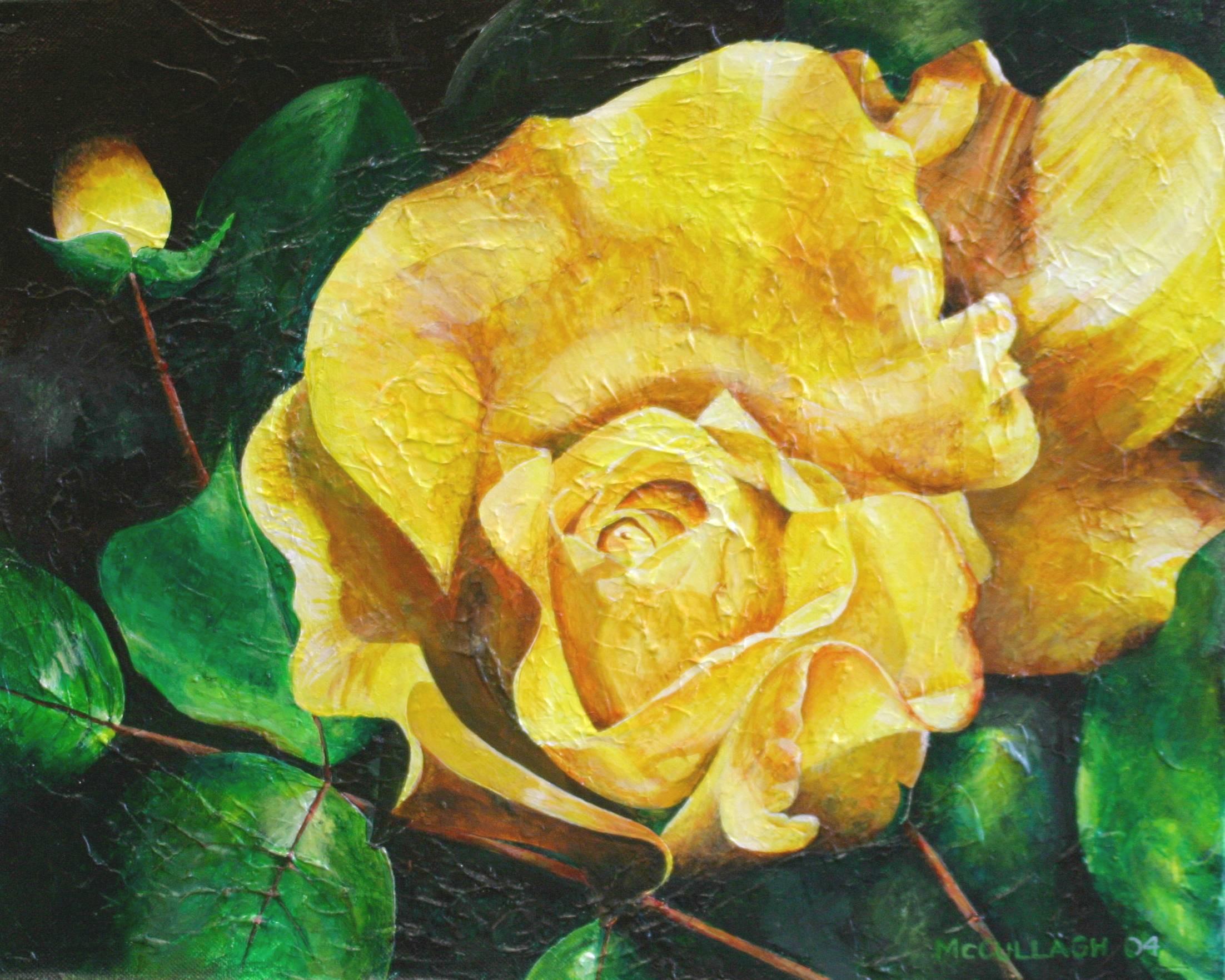 The Yellow Rose of....jpg