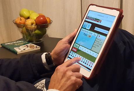 Dule jugando iPad I.jpg