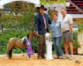 dixie res futurity.jpg