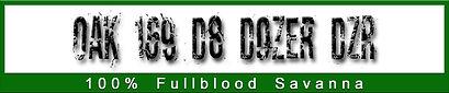D8 logo.jpg