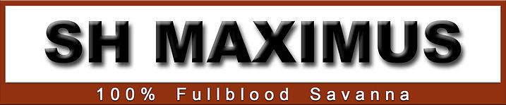 max logo.jpg