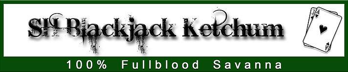 BJK logo.jpg