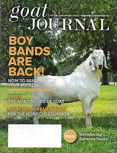 goat journal.jpg