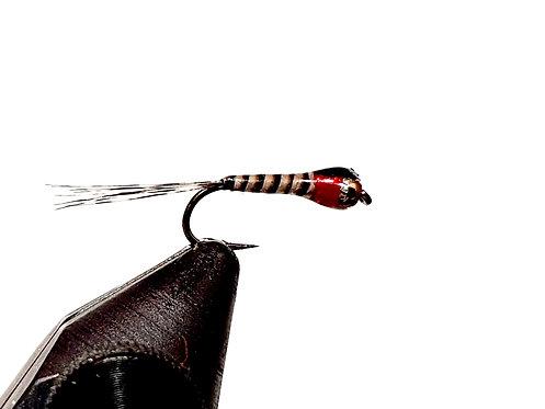 MF-441 Quill-Rojo