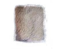 Pronghorn Blanco Sobre Piel