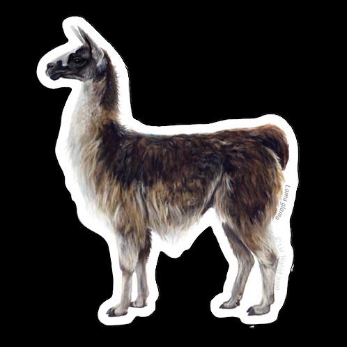 Llama Sticker