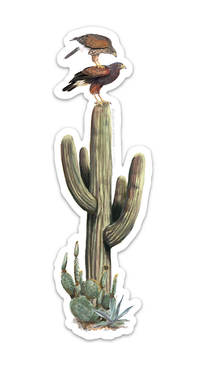 Back Stacking Harris's Hawks Sticker