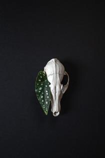 Skulls-RD2-1.jpg
