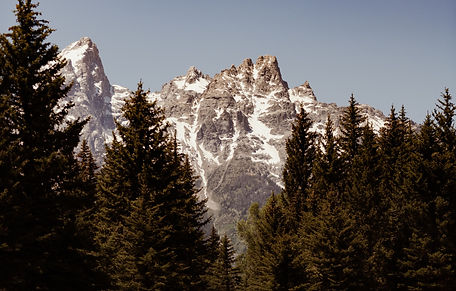 Travel-Wyoming-Tetons-WIX-14_edited.jpg