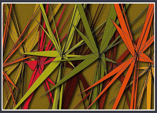 DNC-04AB3Star-Frame_edited.jpg