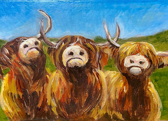 Three cheeky highland cows - Signed & framed print