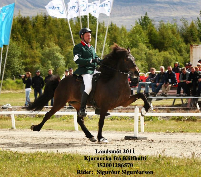 Hestheimar-Kjarnorka.jpg
