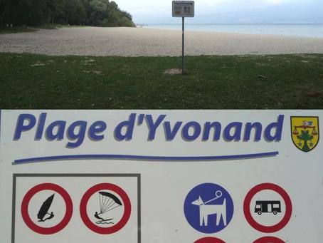 Bise à Yvonand: plage gérée...