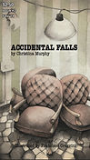 Flyleaf Literary Journal Chicago Issue #2 Accidental Falls by Christina Murphy