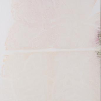 Imprint #85