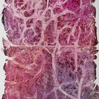 Imprint #82