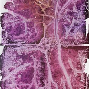 Imprint #54