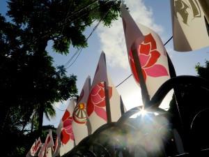 Emerge Flags.jpg