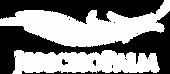jericho logo white.png