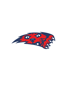 JR WILDCATS NEW DESIGNS 12.28.20.png
