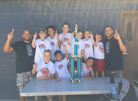 9U Champs once again.....boys are on a roll!!!