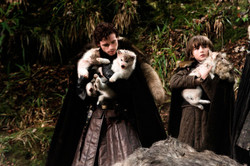 Game of Throne Puppies
