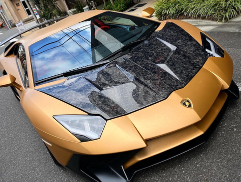 Aventador Brushed Steel Gold