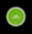 Solo Logo - Trasparente.png