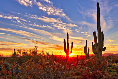 Arizona-Landscape.jpg