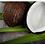 Thumbnail: שמן קוקוס-אורגני, כבישה קרה