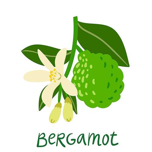 D ברגמוט