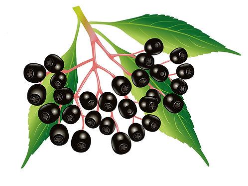 סמבוק שחור - פירות