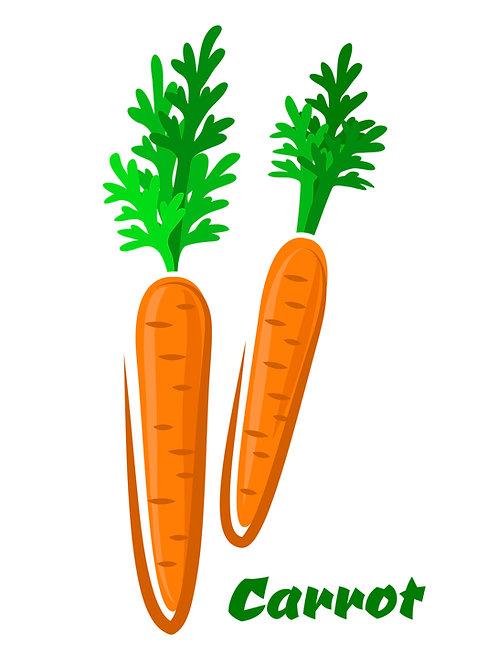 D זרעי גזר