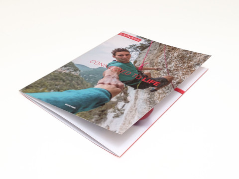 EDELWEISS | brand book | design graphique