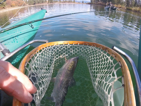 AUTUMN FISHING REPORT