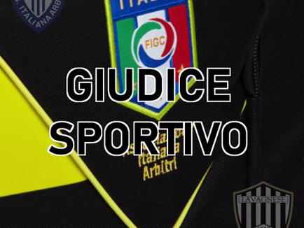 AIA : le decisioni del Giudice Sportivo per Serie D e Juniores dopo la 7^giornata.