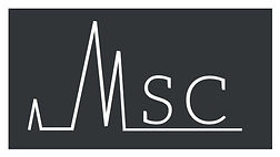 MSCConsultingFrance.jpg