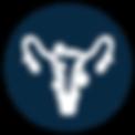 Fibroid treament Dallas, TX IVC icon