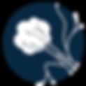 Fibroid treament UFE Dallas, TX IVC icon